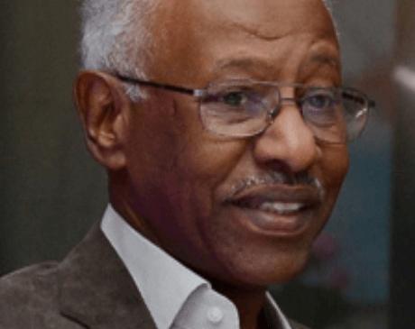 Mr. Amin Bashir El Nefeidi